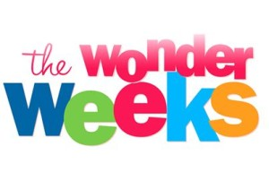 The-Wonder-Weeks-Welcome1